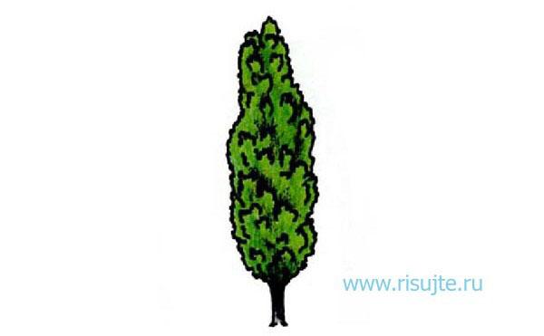 01.Как рисовать дерево карандашом – простой урок