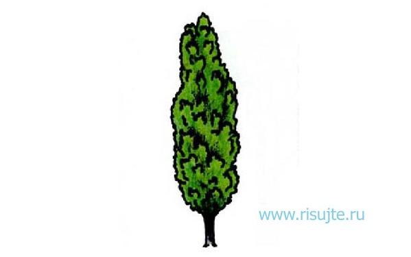 05.Как рисовать дерево карандашом – простой урок