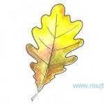 Как рисовать листья деревьев