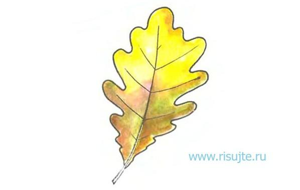 01.Как рисовать листья деревьев