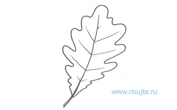 05.Как рисовать листья деревьев