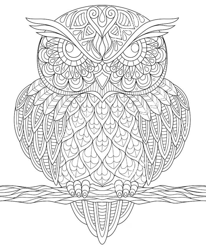 Volwassen Kleurplaten Kerst Раскраски антистресс совы